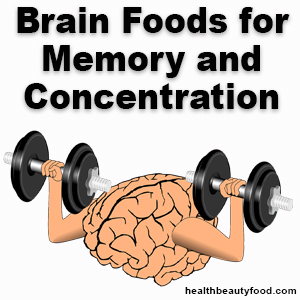 Brain Foods for Memory and Concentration